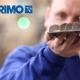 Primo on tyytyväinen Paletten ostolaskuautomaatioon