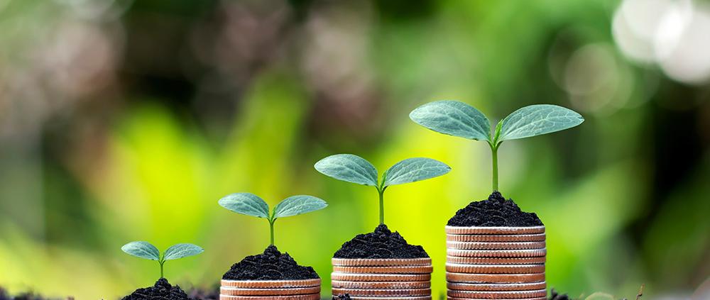 Lue kirjoitus: Taloushallinnon järjestelmä ostolaskuille – Palette Software